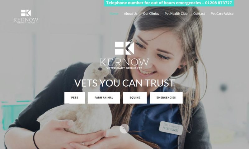 Kernow Veterinary Group – Churchend Vets